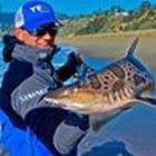 Mani Pailer holding shark